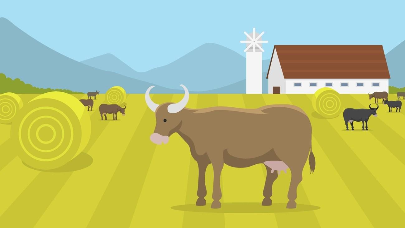 Bitcorn Farm #204