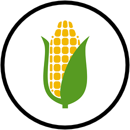 BITCORN Icon